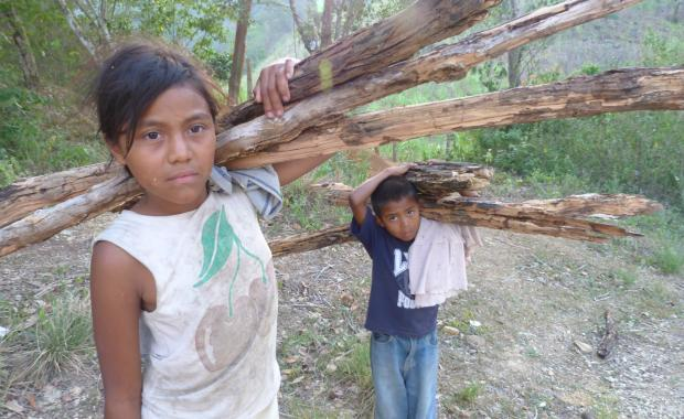 Children are often responsible for gathering wood--his load weighs about 25 pounds.
